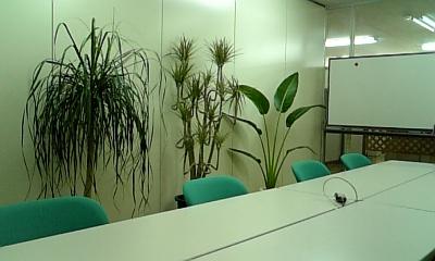 観葉植物20070929_02