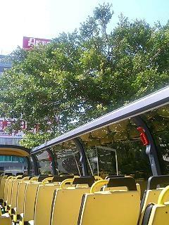skybus_4.JPG