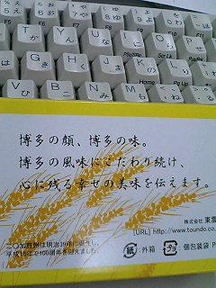 080212_15560001.jpg