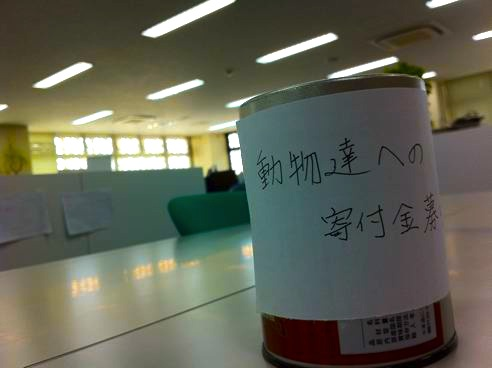 yoyasuda1103230.JPG