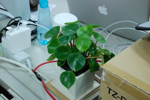 desk8001.jpg