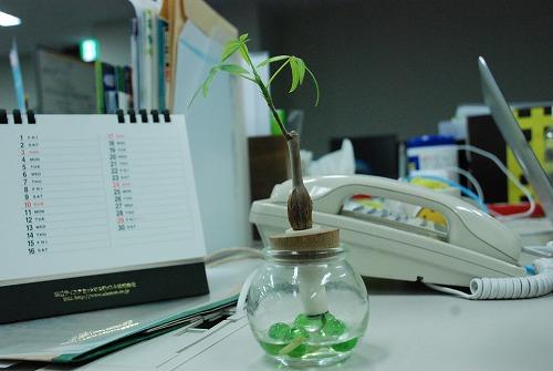 desk805.jpg