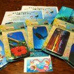 売り上げの一部はサンゴ保全に!沖縄の学生による新しいソーシャルビジネス。