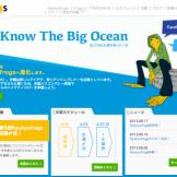 Ryukyufrogs公式サイト