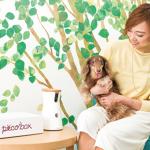 ヒルトン東京ベイ様にて、ペットと一緒にお泊まりできる宿泊プラン 「わんわんスマートルーム」が販売中ですっ  ペット向け健康管理用IoT製品「ハロペiz(アイズ)」も体験できます
